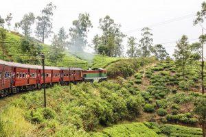 Reisen Sri Lanka - Badeferien Sri Lanka