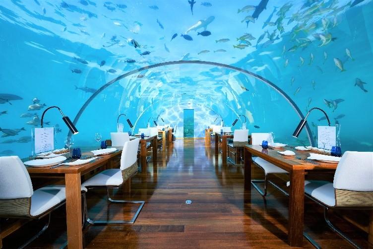 Honeymoon Malediven - Malediven Flitterwochen - Hochzeitsreise