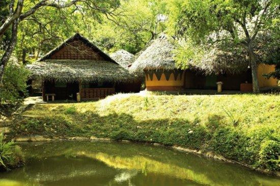 Amaya Lake, Dambulla