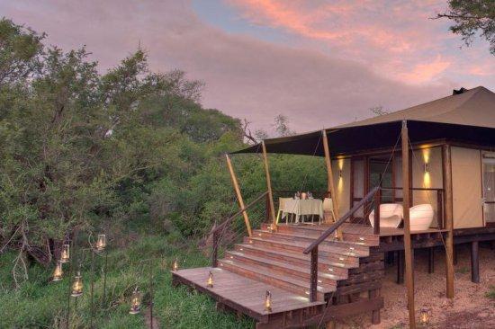 &Beyond Ngala Tented Camp