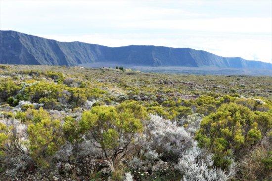 Faszination La Réunion