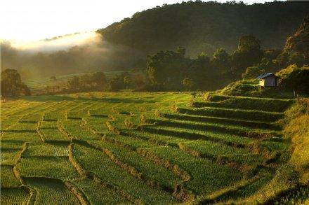 Chiang Rai – Chiang Mai, 265 km