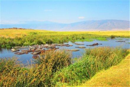 Karatu – Ngorongoro Krater – Serengeti Nationalpark