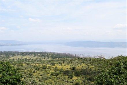 Masai Mara Game Reserve – Lake Nakuru Nationalpark